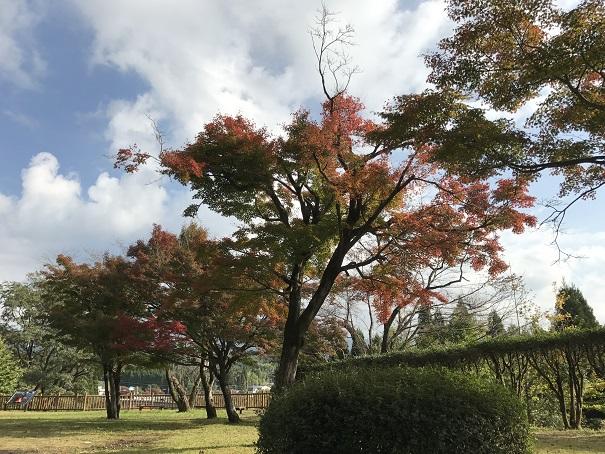 blog_oshirase_kouyou_kirishima1